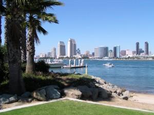hair transplatn - San Diego