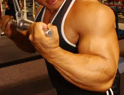 Can you take propecia and steroids